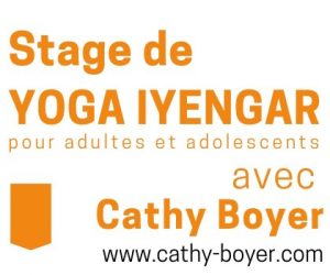 WE 30 nov et 1 déc … Stage de Yoga Iyengar
